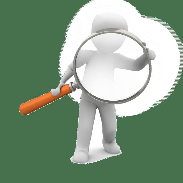 loupe-recherche-nuisible-alogo3d-desinsectisation-pestcontrol-94-75-91-92-77-78-paris-02