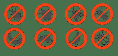 plan-lutte-antiparasitaire-algo3d-pest-control-paris